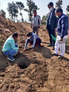 DM इवा श्रीवास्तव ने बुडोगी गांव पहुंचकर देवेंद्र चौहान के उद्यान में सेब की पौध का रोपण किया