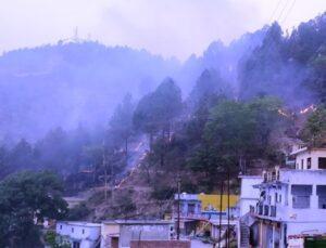 मखलोगी पट्टी क्षेत्रान्तर्गत ग्रामीण कस्बा नकोट में कोठीखाला के पास गत देर सायं वनाग्नि की लपटों से चीड़ का एक पेड़ बस्ती में गिर पड़ा