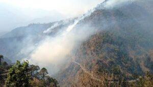 माणदा धारअकरिया के जंगलों पर भी वनाग्नि का कहर