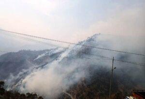 माणदा धारअकरिया के जंगल में आज दोपहर से भयंकर आग लगने से वनसम्पदा एवं पशु चारा सहित जीव-जंतु का नुक़सान
