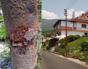 उखीमठ तहसील हेडक्वार्टर में विद्युत विभाग की लापरवाही अनहोनी को दे रही न्योता