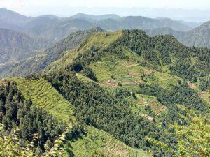 डायरी के अंश: मैं बहुत भाग्यशाली हूं कि मैं पहाड़ में पैदा हुआ