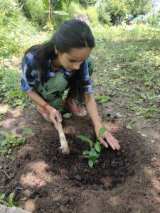 दीपिका चौहान के साथ मास्टर अंशुमन नेगी एवं अंशिका नेगी ने नींबू प्रजाति के फलदार वृक्षों का रोपण किया